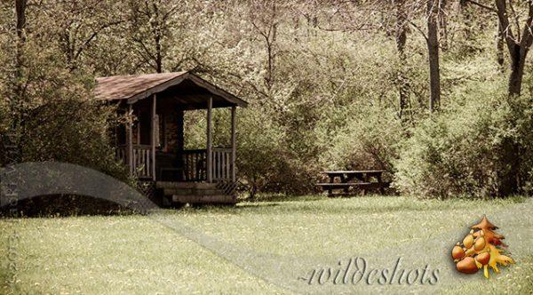 wildeshots-050613_0033